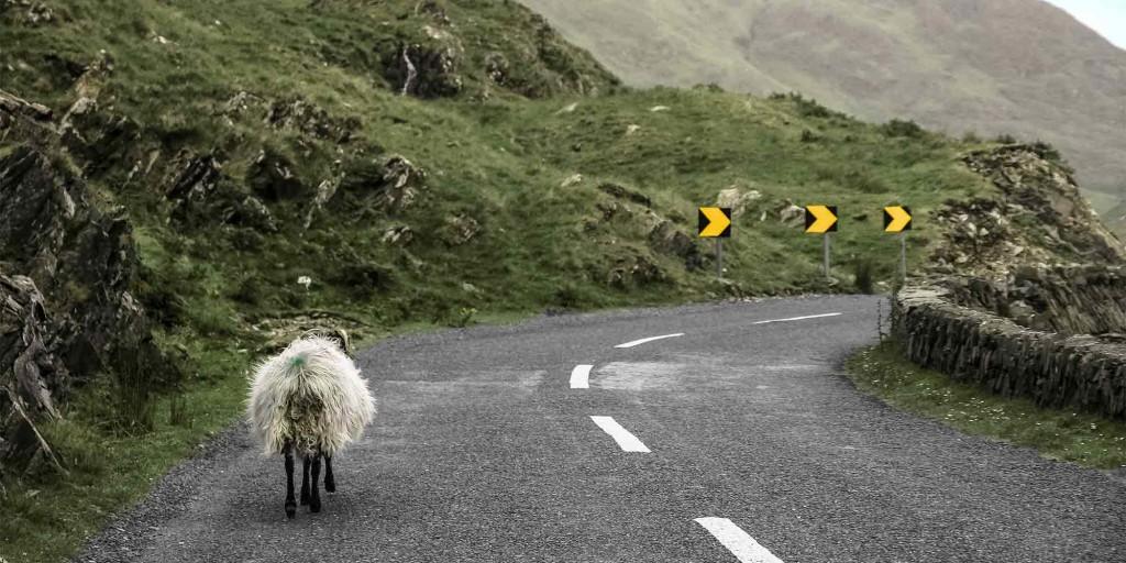 Linksverkehr