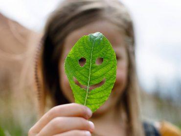 WLTP-Testzyklus bildet Verbrauch und Emissionen realitätsnah ab
