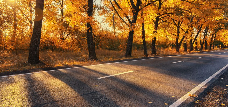 Tipps für's Autofahren im Herbst
